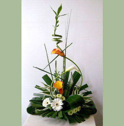 Occasion Florist in Bolton Arrangements from £15.00